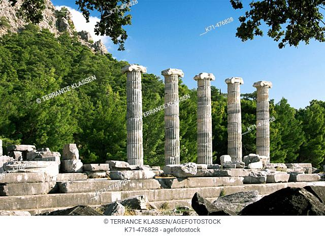 Several columns of the Temple of Athena beneath Mt Mykale are still standing among the ruins of Priene, Turkey