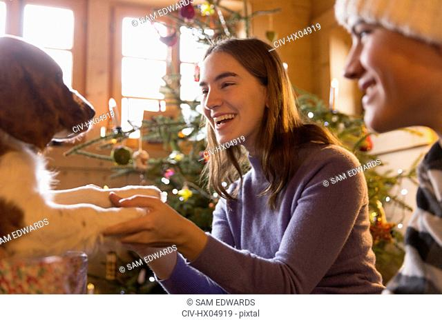 Happy brother and sister playing with dog in Christmas living room