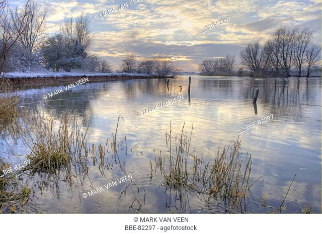 Winter view on river island De Bol, which is a small island in the river Lek It is part of the Natura 2000 site Uiterwaarden Lek It is situated in the flood...