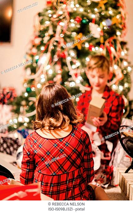 Siblings opening Christmas gifts by Christmas tree