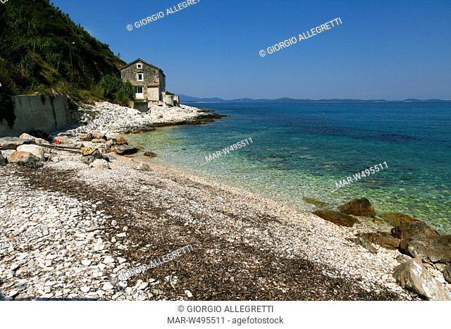 isola di susak sansego, croazia, europa