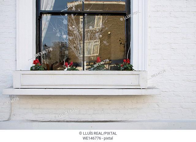 Christmas, Window, Chelsea, London, England