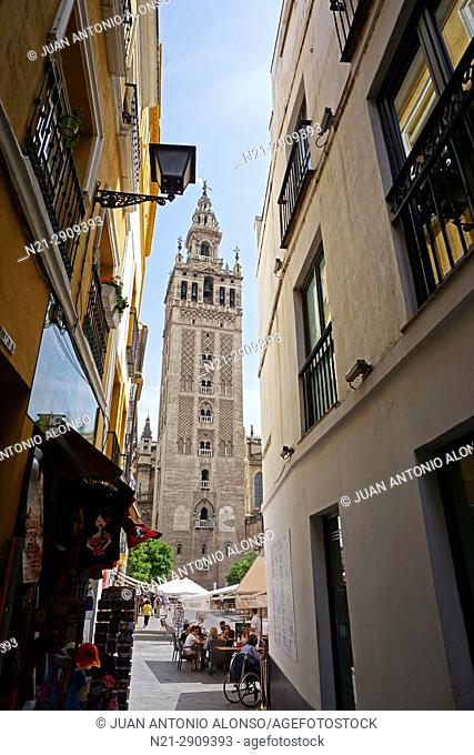 La Giralda seen from Calle Placentines. Santa Cruz Quarter. Seville, Andalucia, Spain, Europe