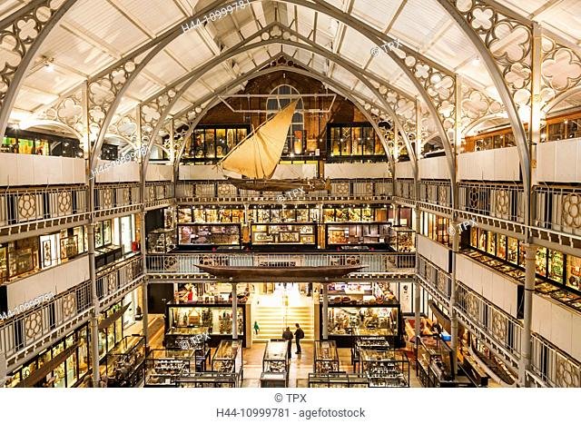 England, Oxfordshire, Oxford, Pitt Rivers Museum, Interior View
