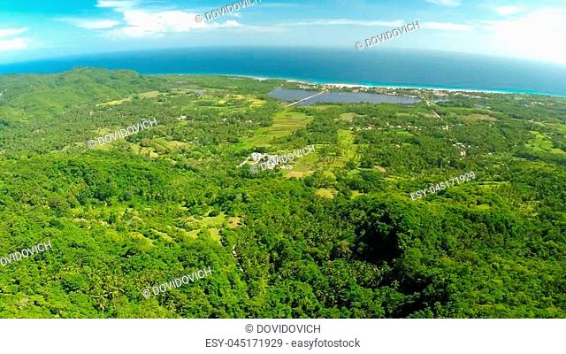 Filipina jungle and forest aerial views. Filipino nature