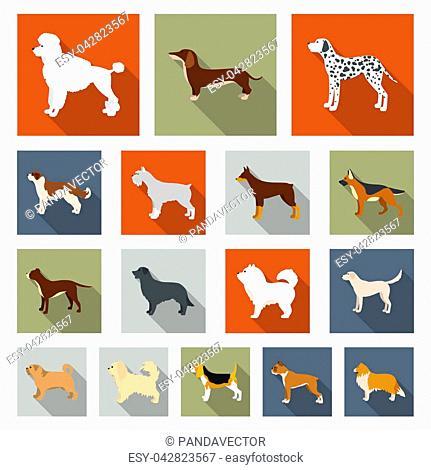 Dog breeds flat icons in set collection for design.Dog pet bitmap symbol stock illustration