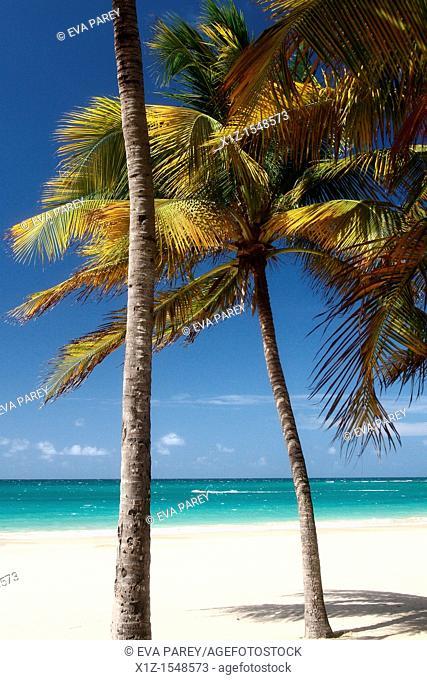The beach in Isla Verde in San Juan, Puerto Rico