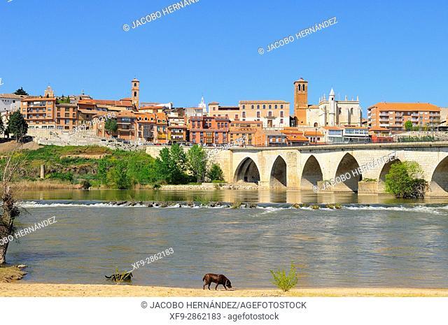 Tordesillas and Duero river.Valladolid province.Castilla y Leon.Spain