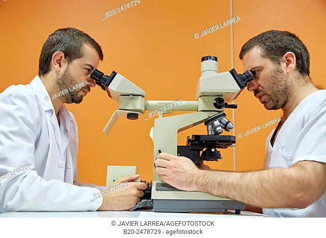 Doctors looking through microscope, Anatomic Pathology, Hospital Donostia, San Sebastian, Basque Country, Spain