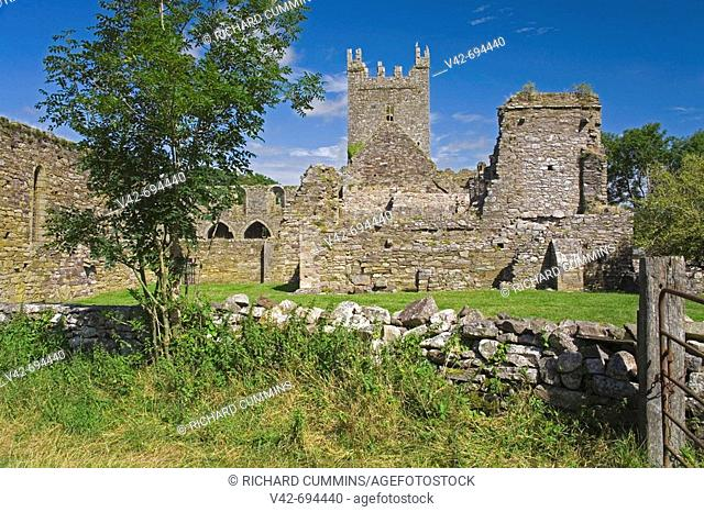 Jerpoint Abbey, County Kilkenny, Ireland