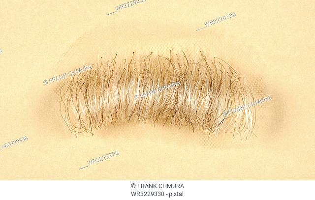 Artificial Mustache for Film and Theater Production