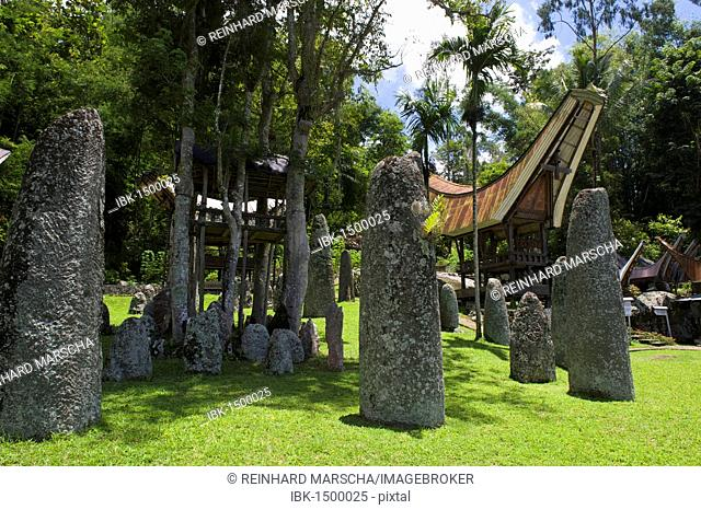 Ceremony site with megaliths and traditional Toraja houses, Kalimbuang Bori', near Rantepao, Sulawesi, Indonesia, Southeast Asia