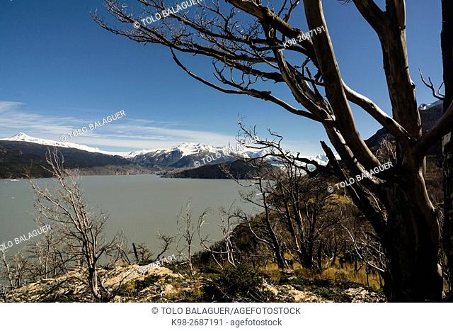 valle del lago Grey, trekking W, Parque nacional Torres del Paine,Sistema Nacional de Áreas Silvestres Protegidas del Estado de Chile