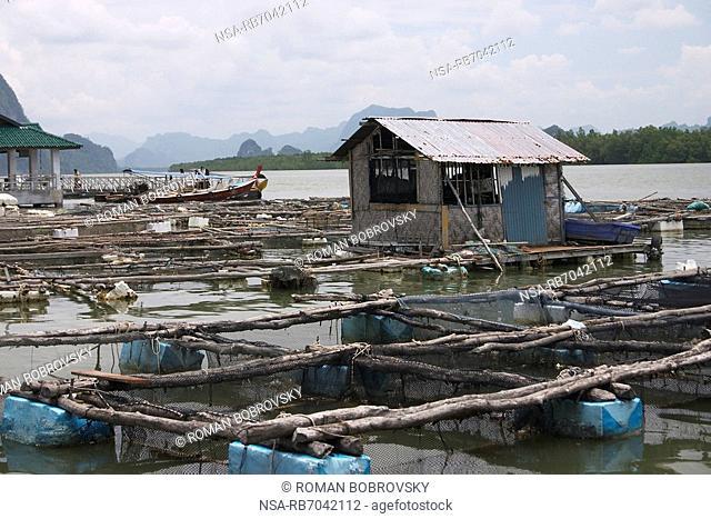 Fish basins, Muslim village, Ao Phang-Nga National Park