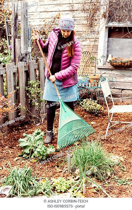 Woman raking garden