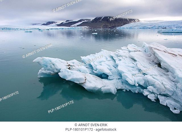 Ice floe in front of Monacobreen, glacier in Haakon VII Land which debouches into Liefdefjorden, Spitsbergen / Svalbard