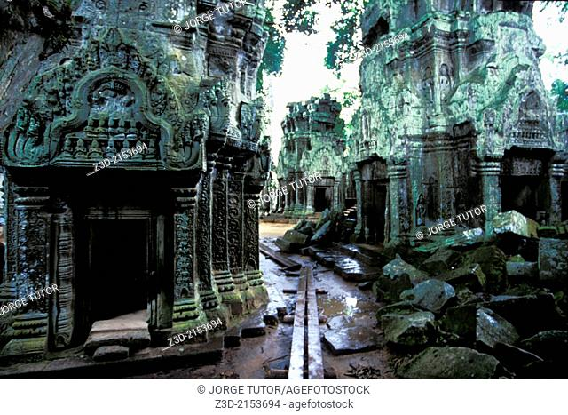 Ta Prohm temple, Ruins of Angkor, Siem Reap, Cambodia. UNESCO World Heritage Site