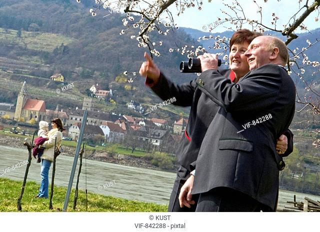 Wachau zur Marillenbluete - Weltkulturerbe Wachau, Nieder÷sterreich, Ísterreich, 23/03/2008