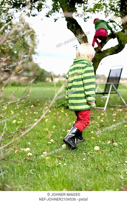 Boy walking in garden and girl climbing tree