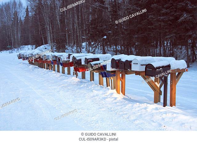 Row of mail boxes in snow, Fairbanks, Alaska
