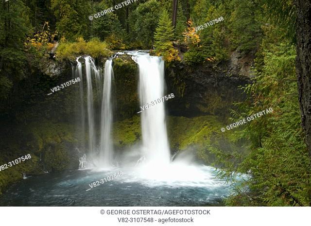 Koosah Falls, McKenzie Wild and Scenic River, McKenzie Pass-Santiam Pass National Scenic Byway, Willamette National Forest, Oregon