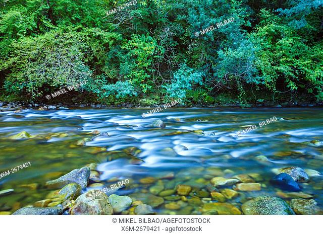 Ason river. Cantabria, Spain