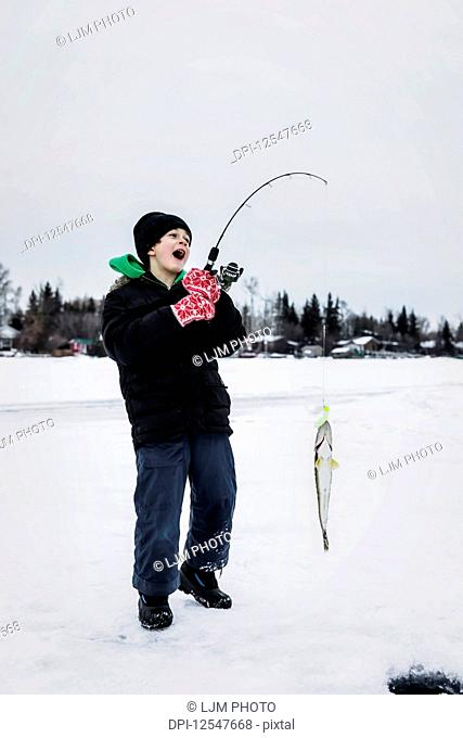 A young boy catching a Walleye while ice fishing on Lake Wabamum during a winter family outing; Wabamun, Alberta, Canada