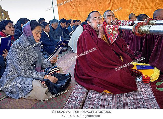 Puja,Monks praying during Losar new year, in Namgyal Monastery,in Tsuglagkhang complex  McLeod Ganj, Dharamsala, Himachal Pradesh state, India, Asia