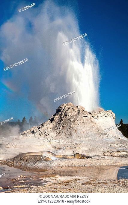 Irregular eruption in Castle Geyser in Yellowstone