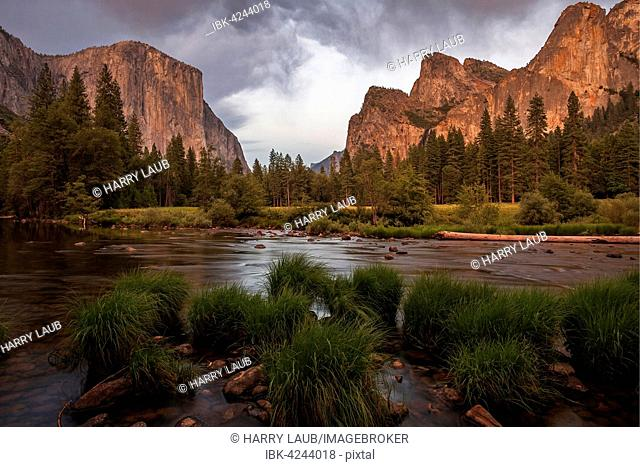 Merced River, El Capitan left, Cathedral Rocks right, evening light, Yosemite Valley, Yosemite National Park, USA