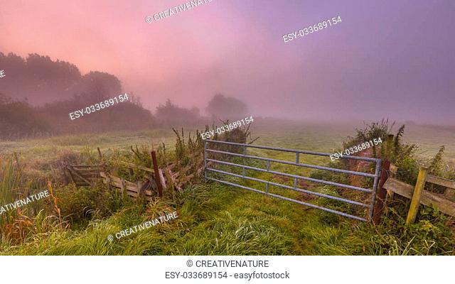 Gate in misty farmland on an early morning in september near Haren, groningen, Netherlands