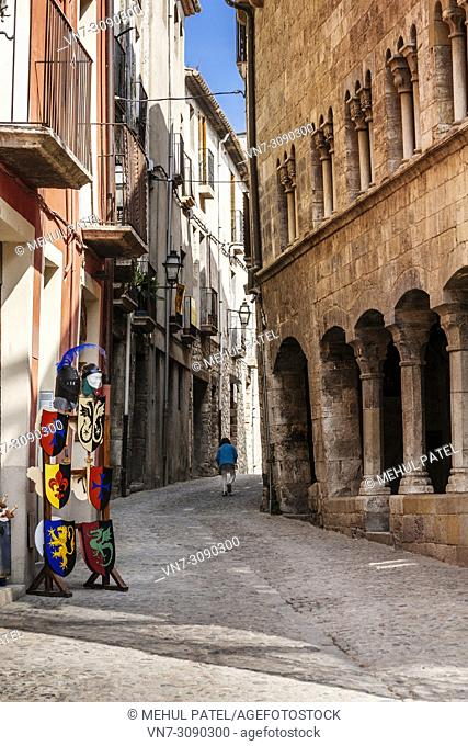 Narrow street in the old town of Besalu, Catalonia, Spain, Europe