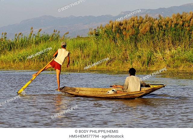 Myanmar Burma, Shan State, Inle Lake, boatman of Intha ethnic group, rowing with his legs