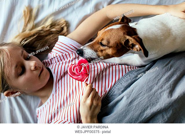Girl lying on bed watching her dog licking lollipop
