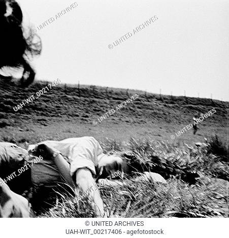 Ein junger Mann liegt im Gras und entspannt., Sammlung Wittmann