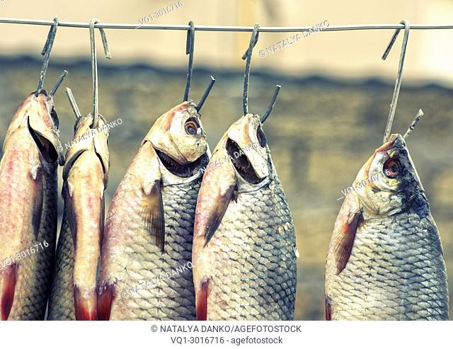 Salted fish ram is hanging on wire and dried outdoors, vintage toning