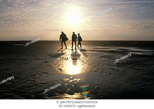 walking at the 'wad' with low tide at the Waddenzee in the Netherlands