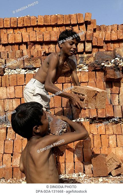 Rural boys working in bricks factory ; Marathwada ; Maharashtra ; India