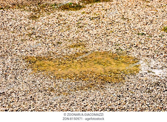 Photo Picture Puddle of water and raindrops