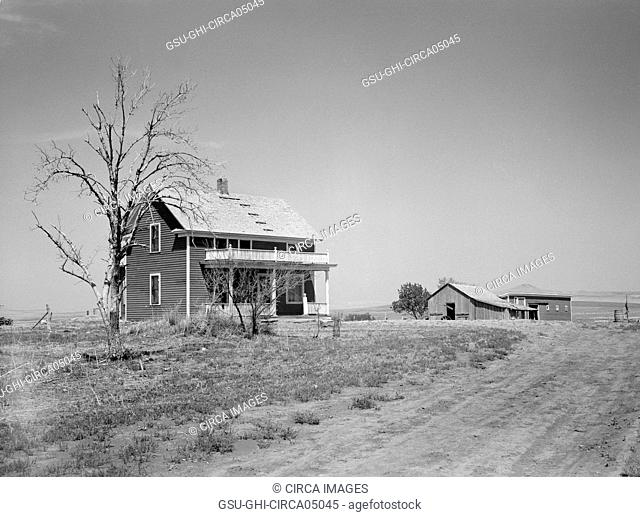 Trees Stripped Bare by Drought and Grasshopper Plague on Farm near Saint Anthony, North Dakota, USA, Arthur Rothstein, Farm Security Administration, July 1936