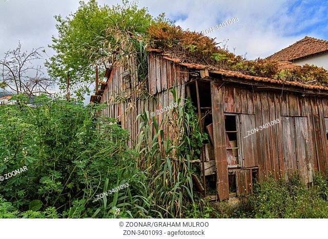 Madeira Portugal Santana Dilapidated Barn