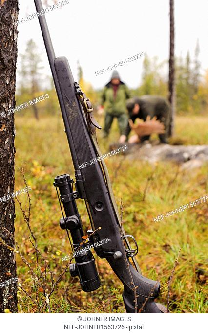 Rifle leaning on tree trunk, hunters in background