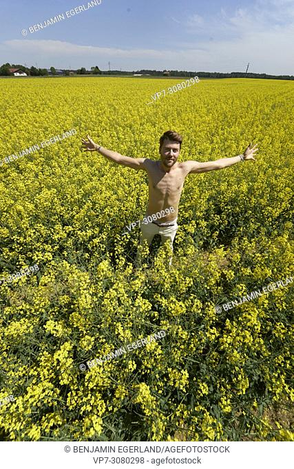 Shirtless man in colza field, with arms wide open. Germany, Bavaria