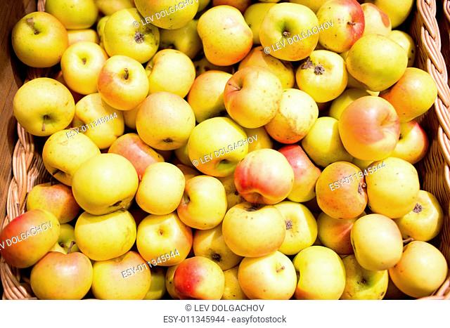 sale, farming, harvest, agriculture and eco food concept - ripe apples in basket at bio market or farm