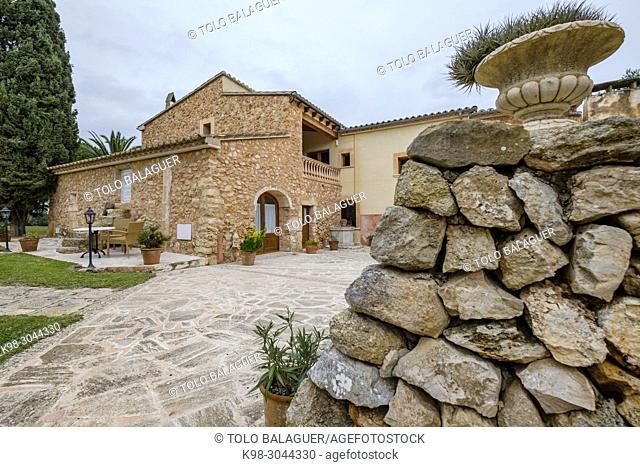 Sa Galera, Cas Concos des Cavaller, Felanitx, Mallorca, balearic islands, Spain