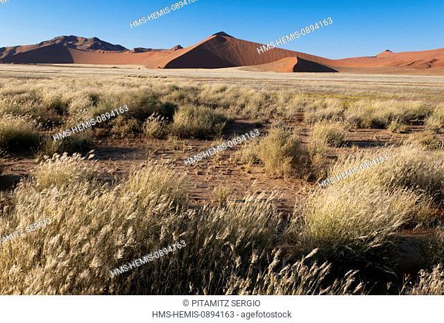 Namibia, Hardap Region, Namib Desert, Kulala Desert Lodge