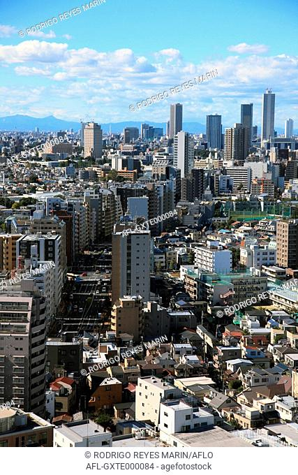 View of Tokyo cityscape