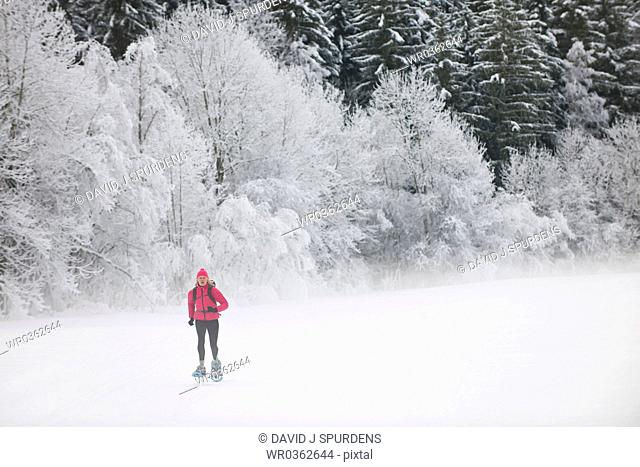 Women jogging in snow shoes through snowy forest