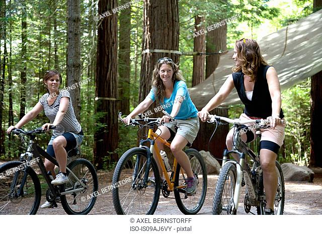 Three women mountain bikers cycling in forest