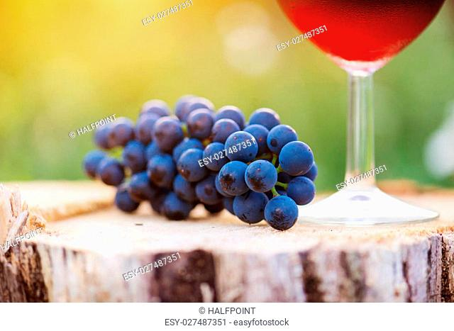 Glass of red wine and bunch of blue grapes laid on wooden stump